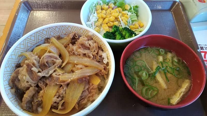 すき家の「牛丼(並盛)サラダセット」