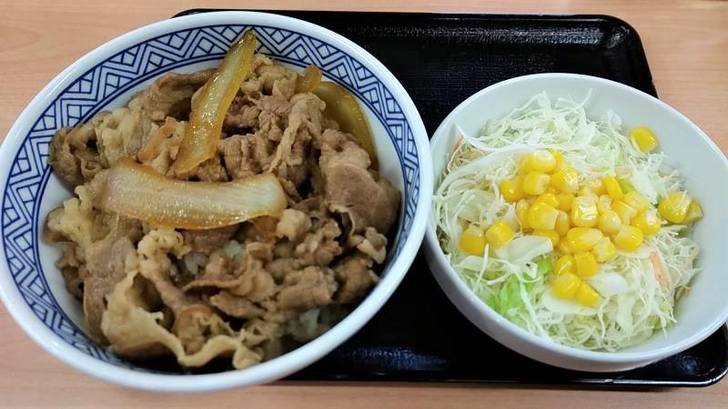 吉野家の牛丼と生野菜サラダ