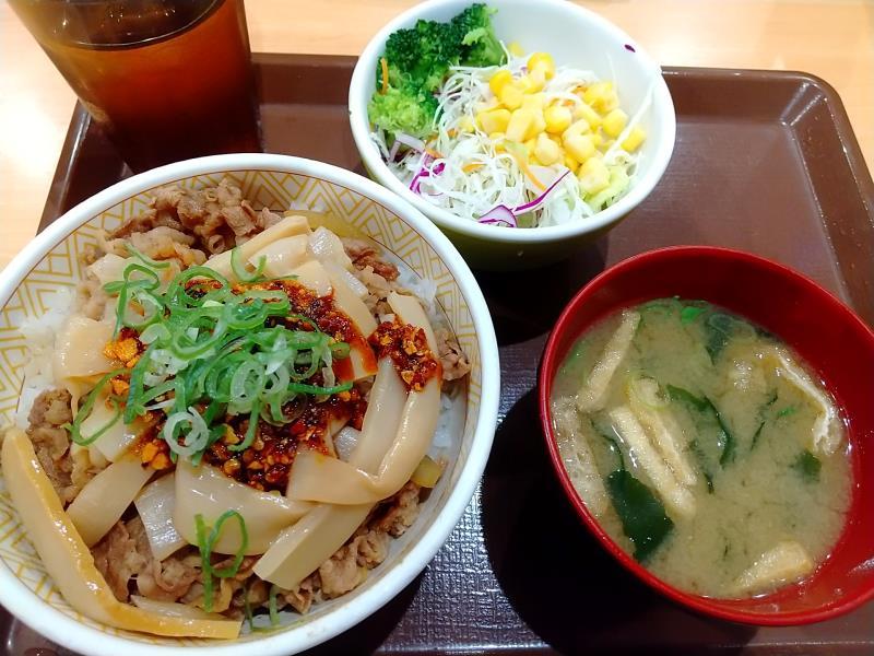 すき家の「食べラー・メンマ牛丼」とサラダセット